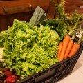 Sopa de legumes do bebé