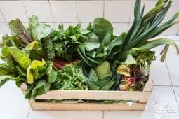 Cabaz de legumes biológico à porta de casa
